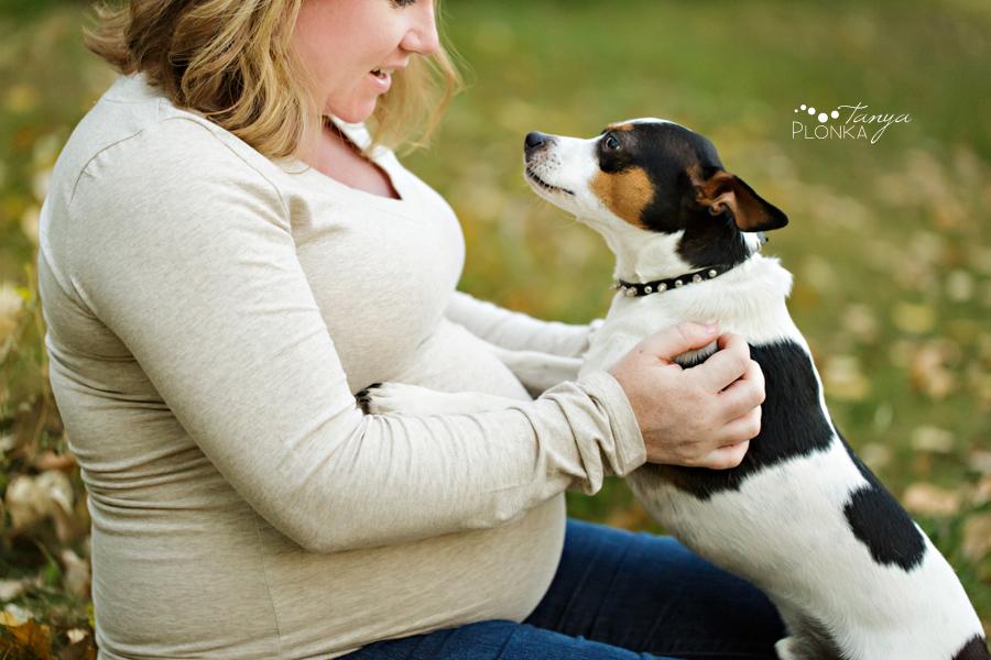 Lethbridge maternity photos, family with small dog