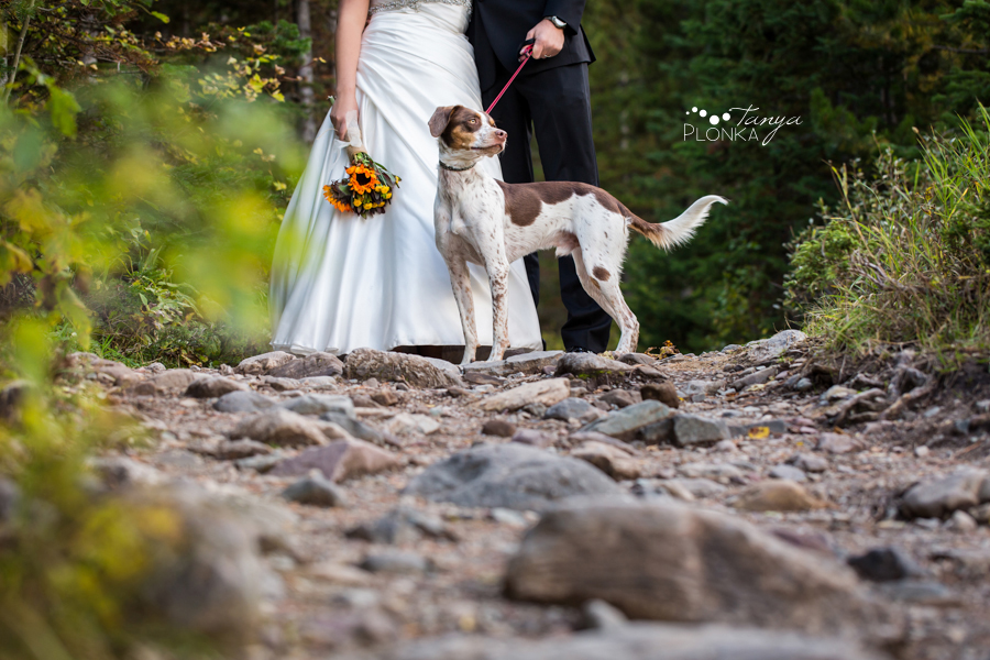 Michael and Chantelle, Waterton wedding photos