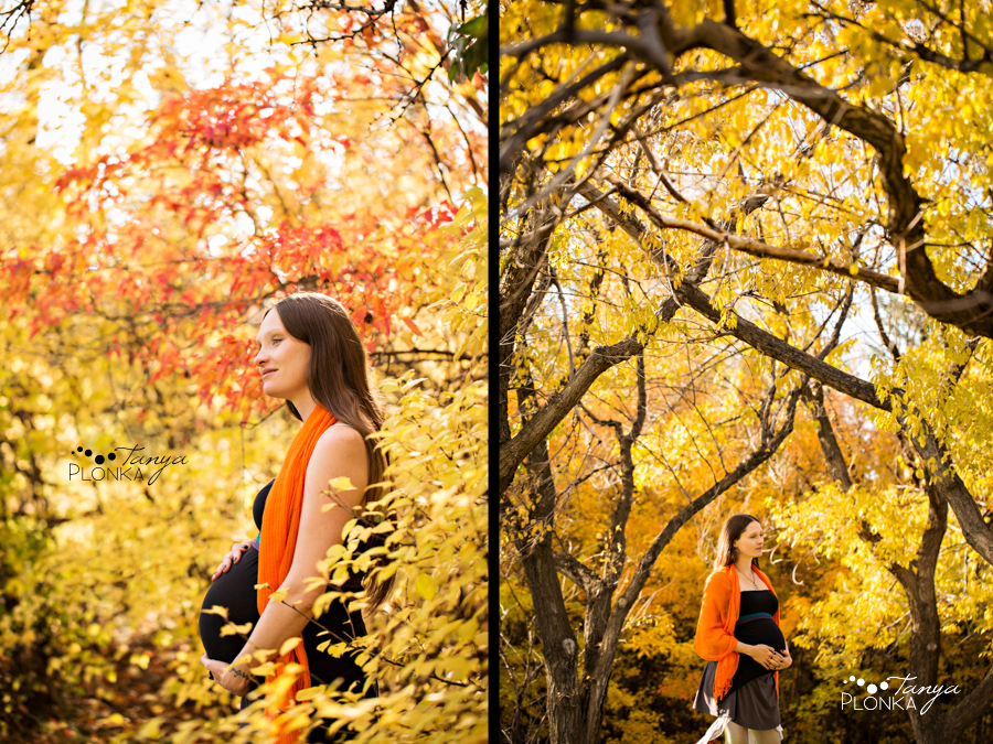 Lethbridge autumn maternity and family photos
