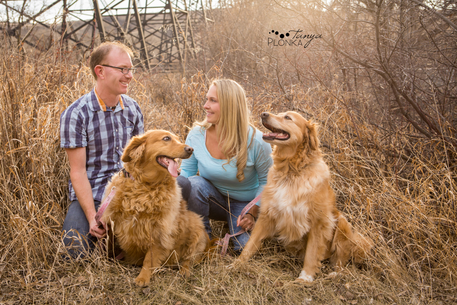 Early spring coulee portraits with dogs