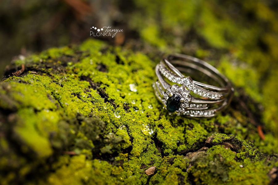 Michelle & Oscar, wedding rings on moss covered in dew