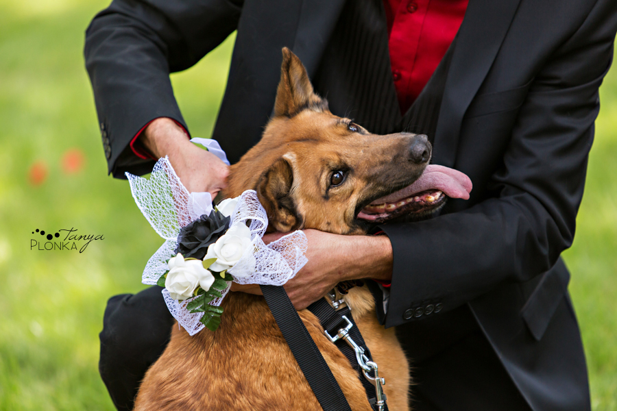 Tony & Kathleen, Lethbridge alternative wedding