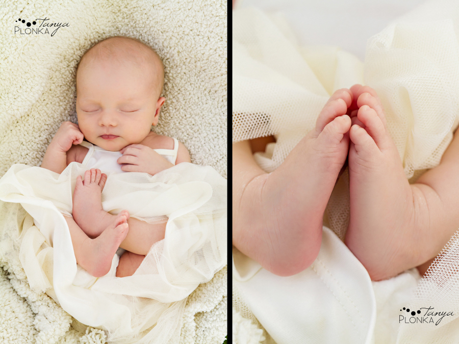Henderson Lake Lethbridge newborn portraits