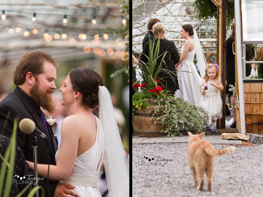 Colby & Allison, Springbreak Crowsnest Pass summer wedding photos