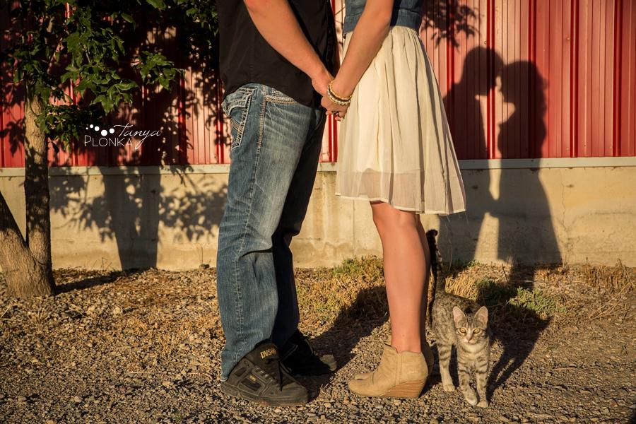 Lethbridge dairy farm engagement photos
