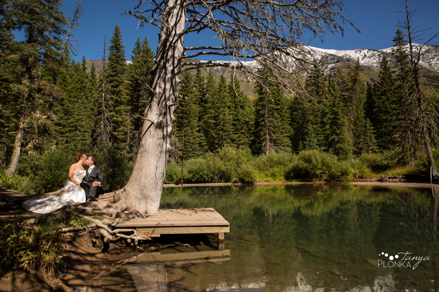 Shawn & Jori, Castle Mountain wedding photography