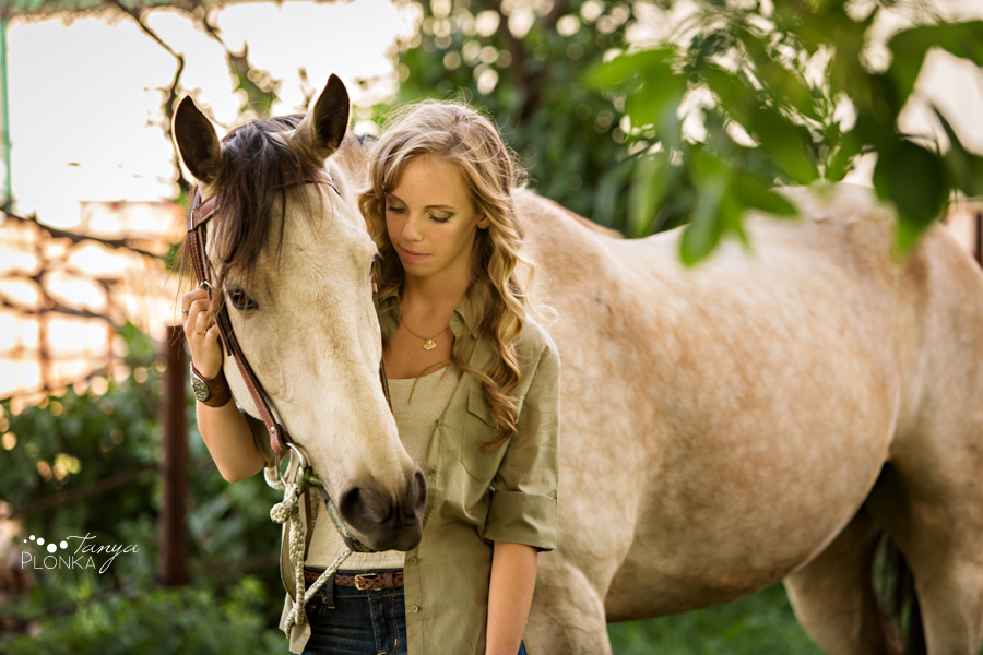 Barnwell country horse photography