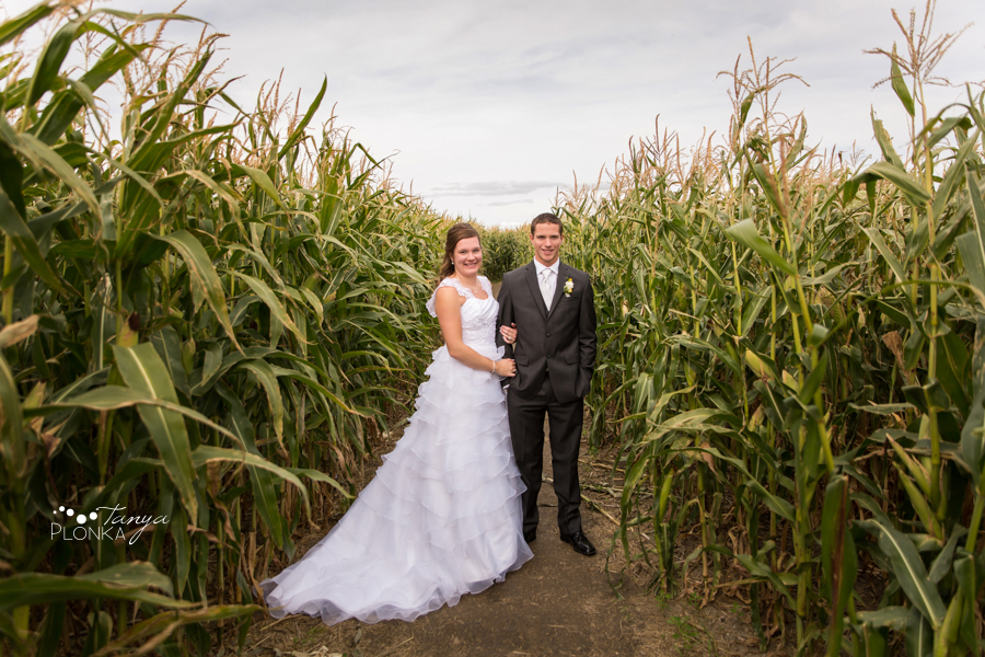 William & Becky, Lethbridge corn maze wedding photography