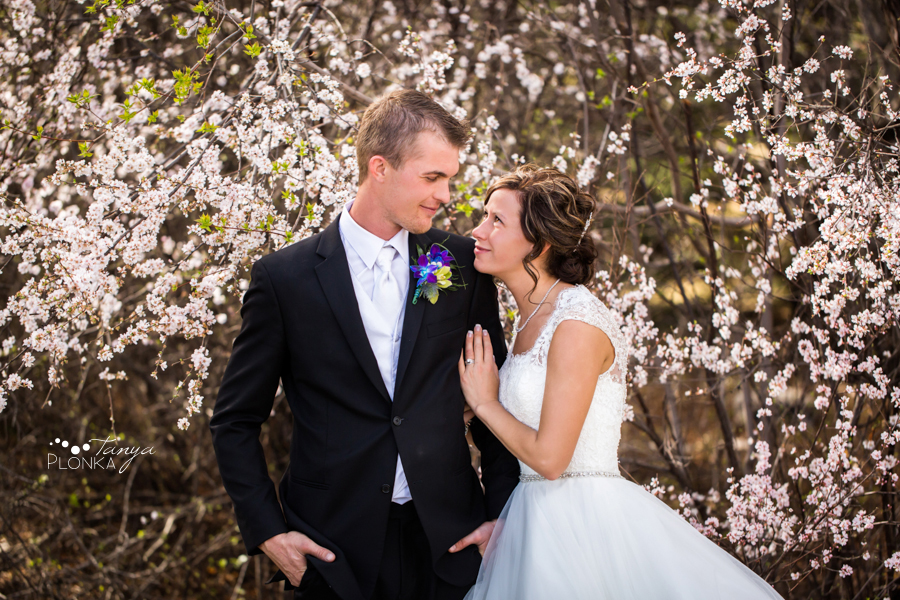 Jamie and Sylvia, Lethbridge spring blossom wedding photos