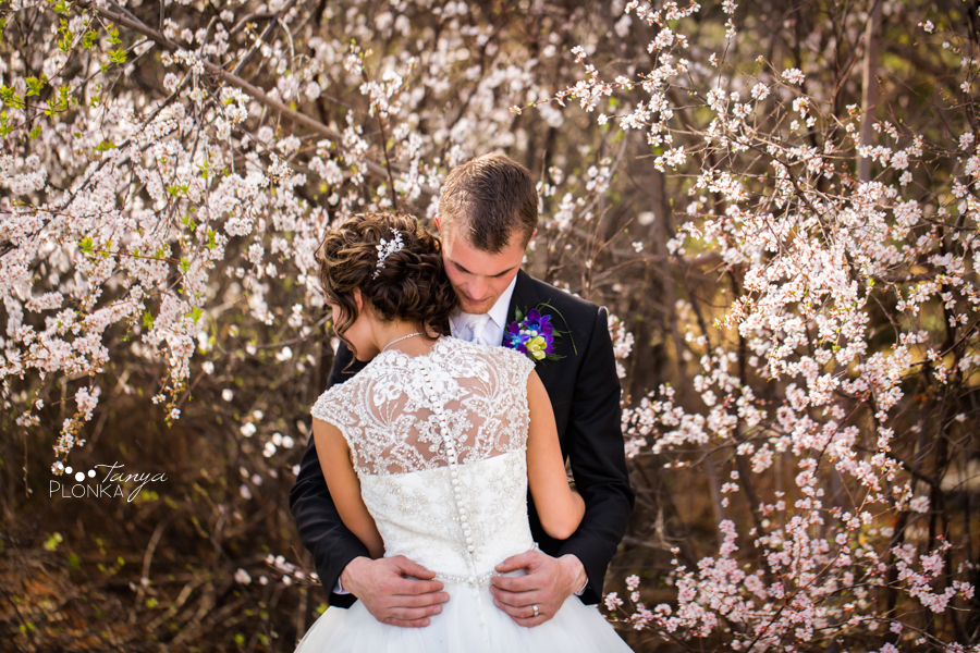 Jamie and Sylvia, Lethbridge spring wedding photography