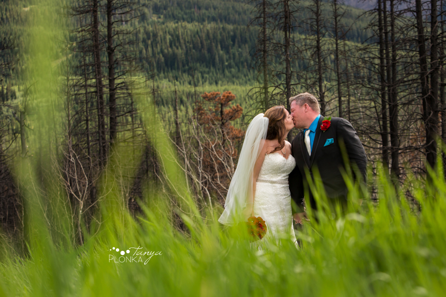 Shawn &#038; Adrienne, Red Rock Canyon forest fire trees></p> <p><img src=