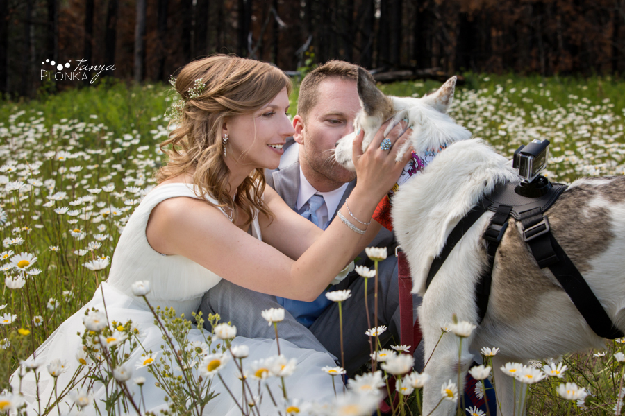 Monika and Peter, Waterton wild flower wedding photos