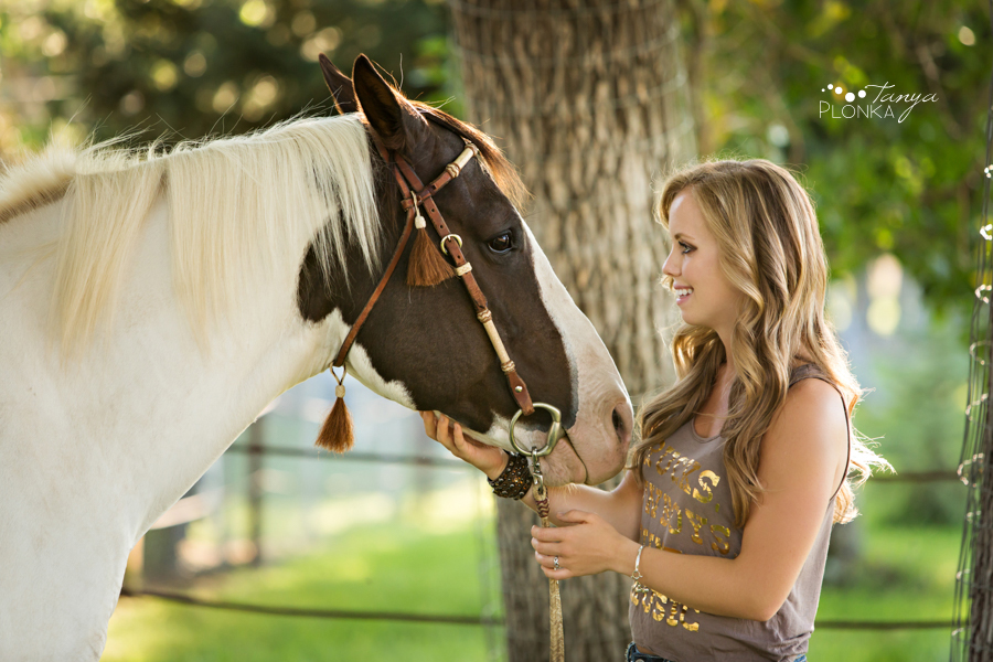 Barnwell equestrian portraits