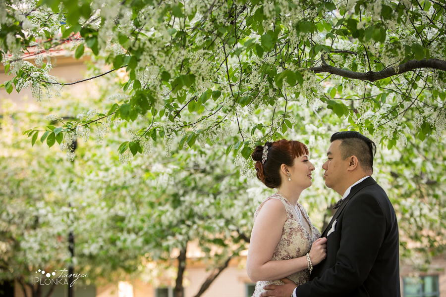 Brittany and Sam, Calgary Chinatown spring wedding photos