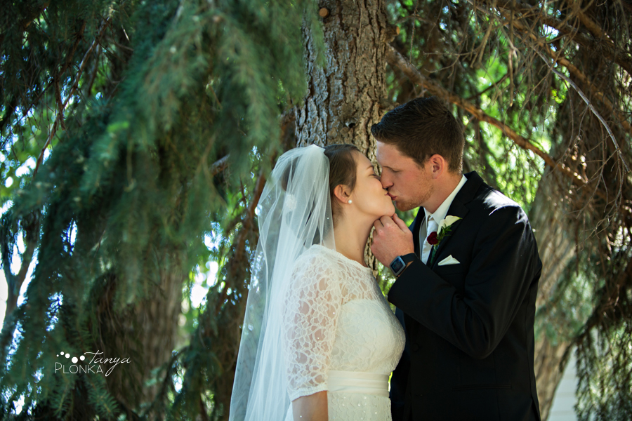 Willene and Joel, Norland Summer Wedding Photos