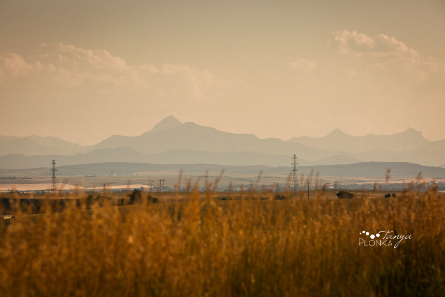 Pincher Creek landscape photography