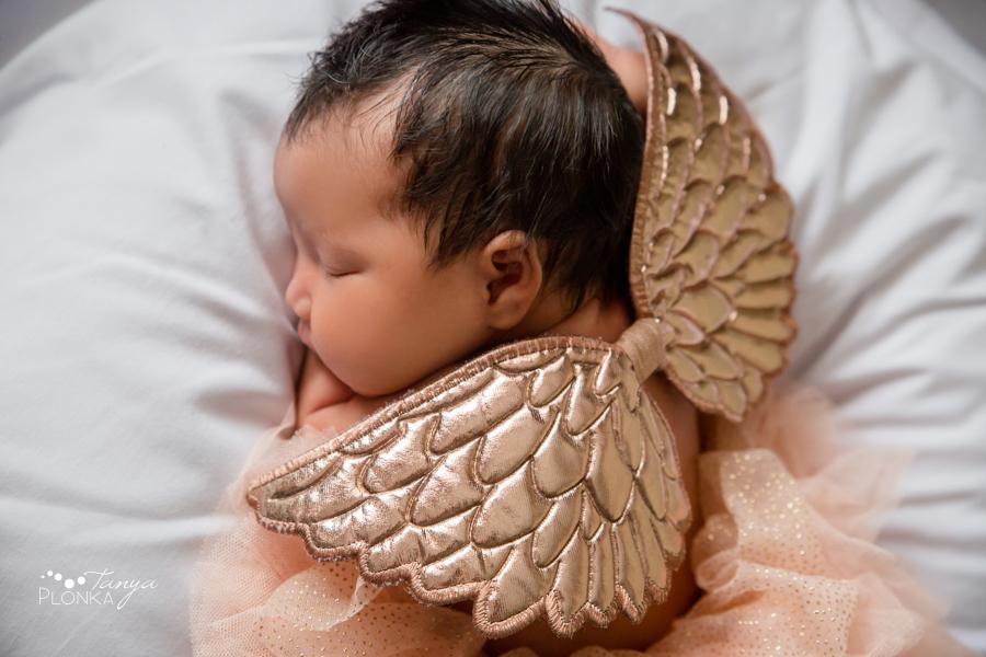 Lethbridge indoor newborn photos