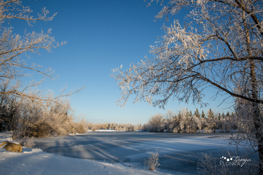 frosty Lethbridge winter photos