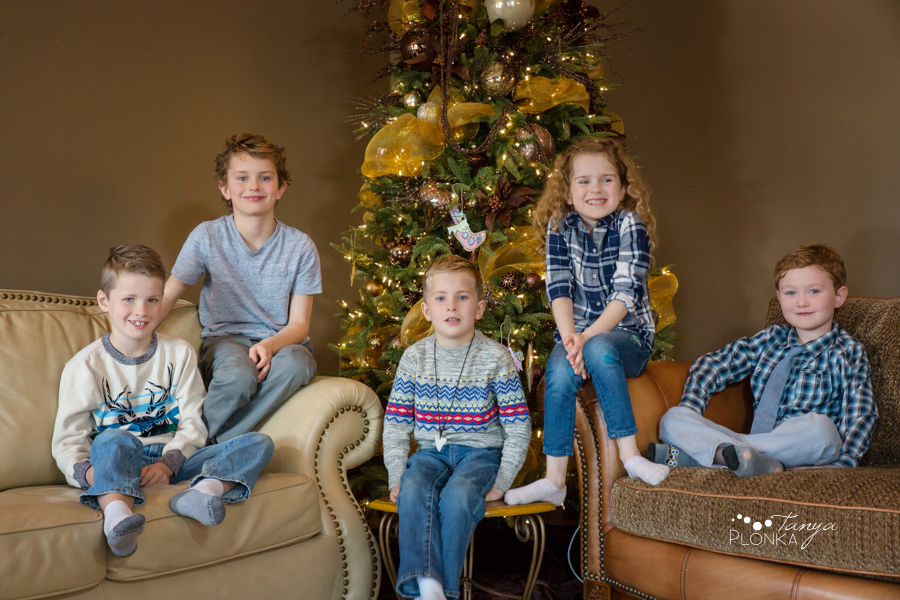 indoor Lethbridge Christmas family photography
