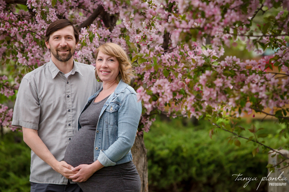 Lethbridge spring blossom maternity photos
