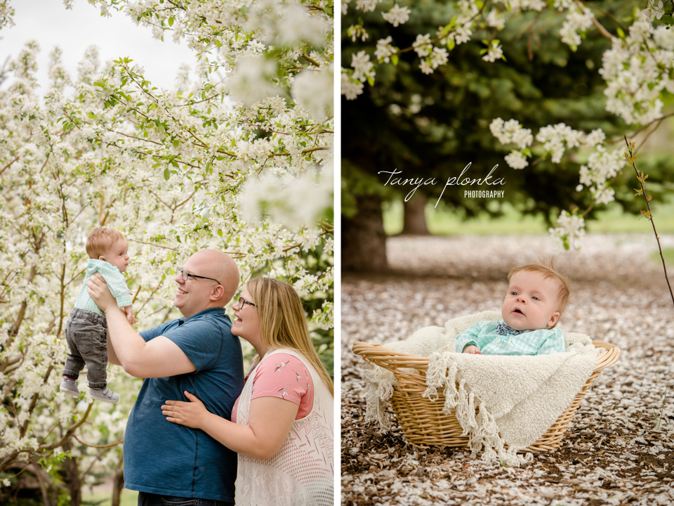 Lethbridge outdoor newborn photo session
