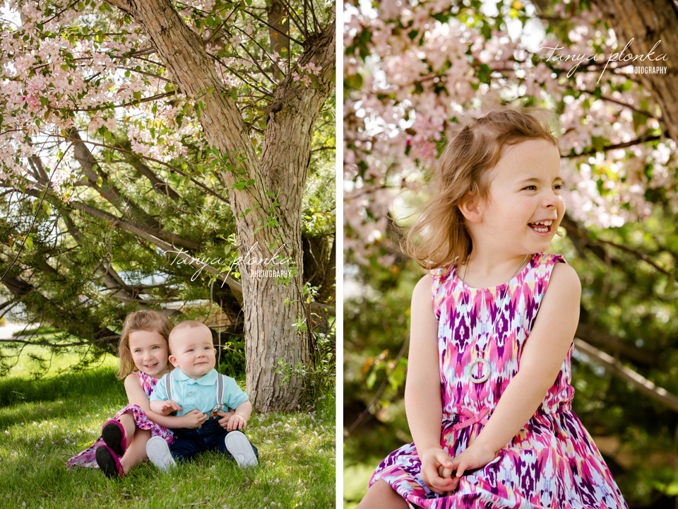 Lethbridge pink blossom family mini session