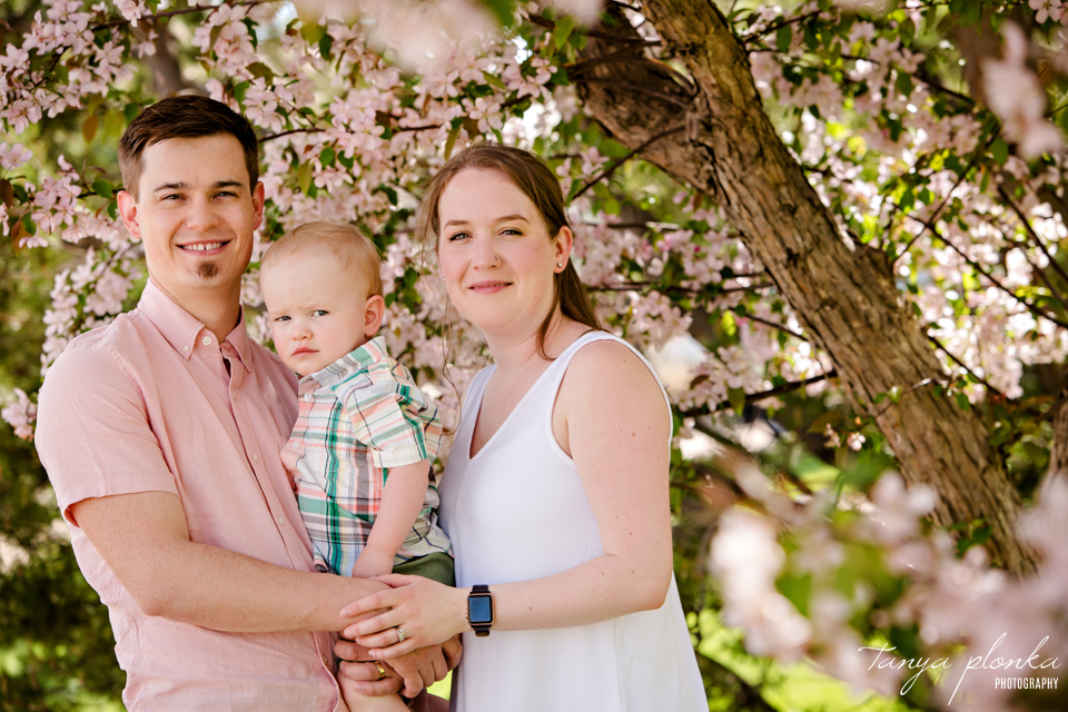 Lethbridge pink blossom family photos