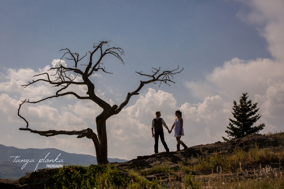 Kelsie & Scott, Burmis Tree wedding photo silhouette
