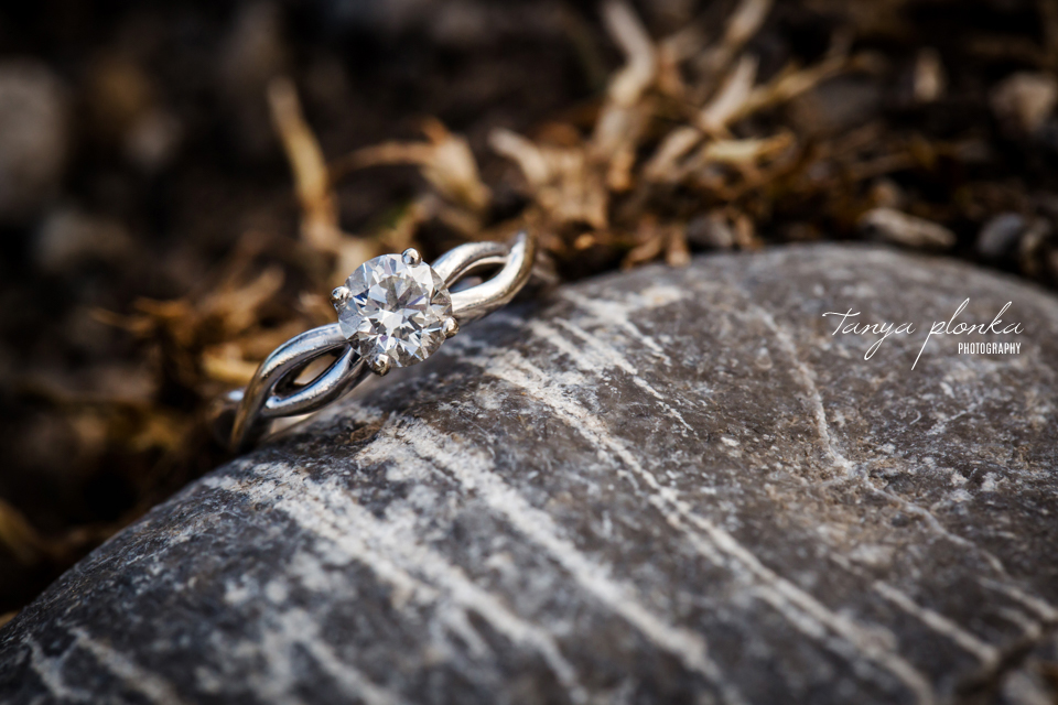 Crowsnest Pass mountain engagement photos