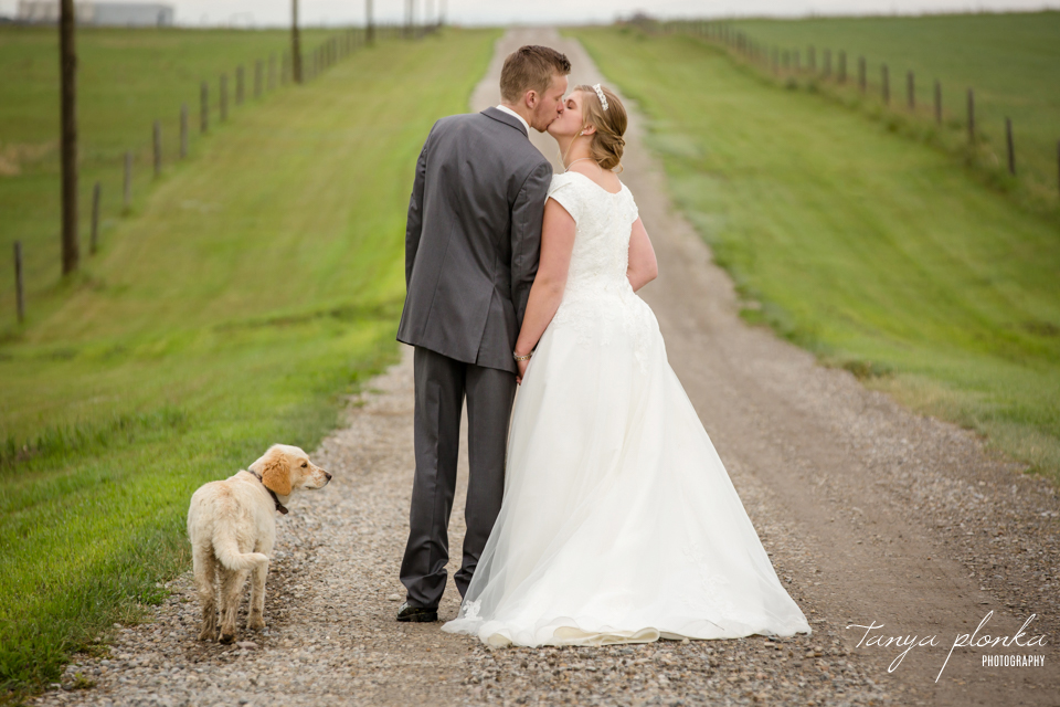 Tacey & Brendan, Fort Macleod farm wedding photos