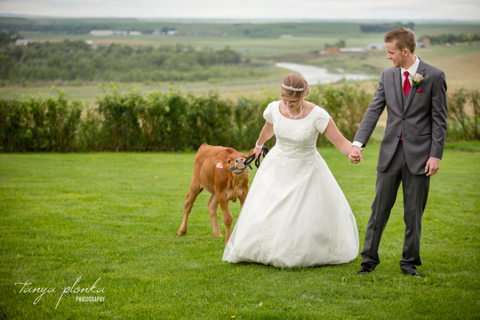 Tacey & Brendan, Fort Macleod farm wedding photos
