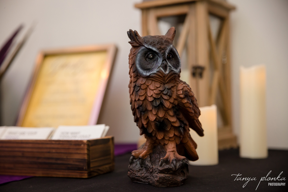 Kendal and Mike, Harry Potter themed wedding