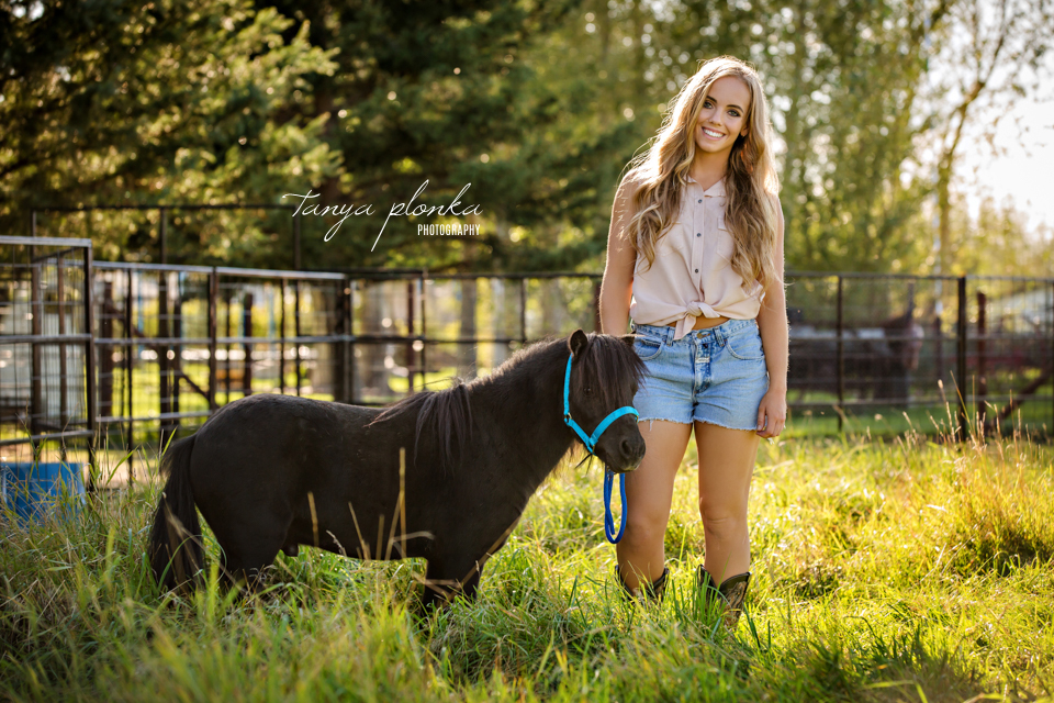 Taber people and pet portraits