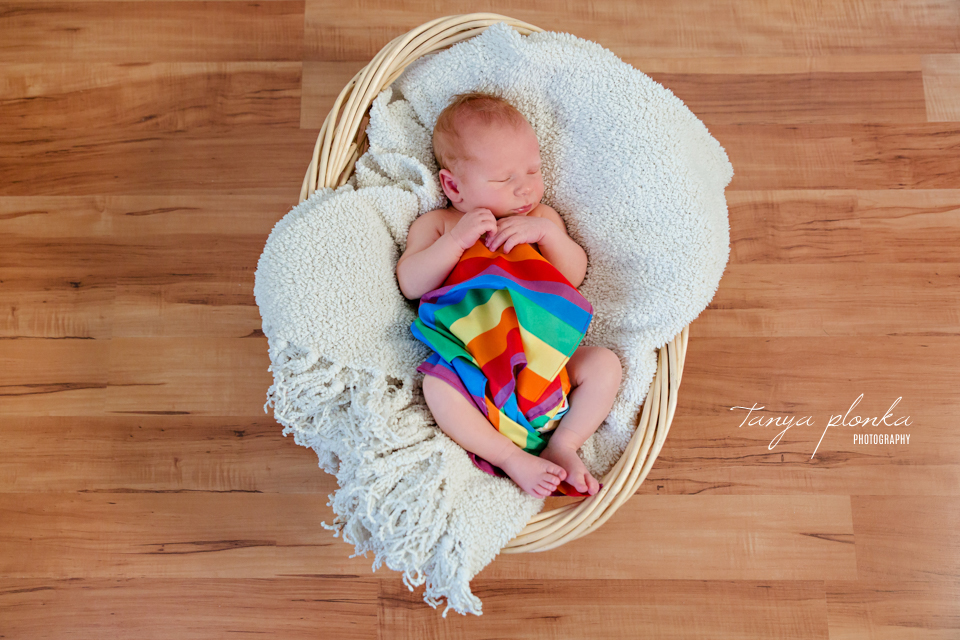 rainbow baby newborn photos Lethbridge