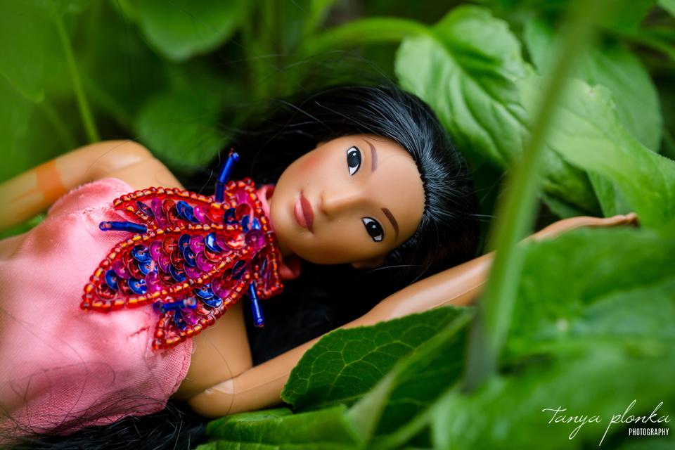 Barbie Pocahontas portrait photos