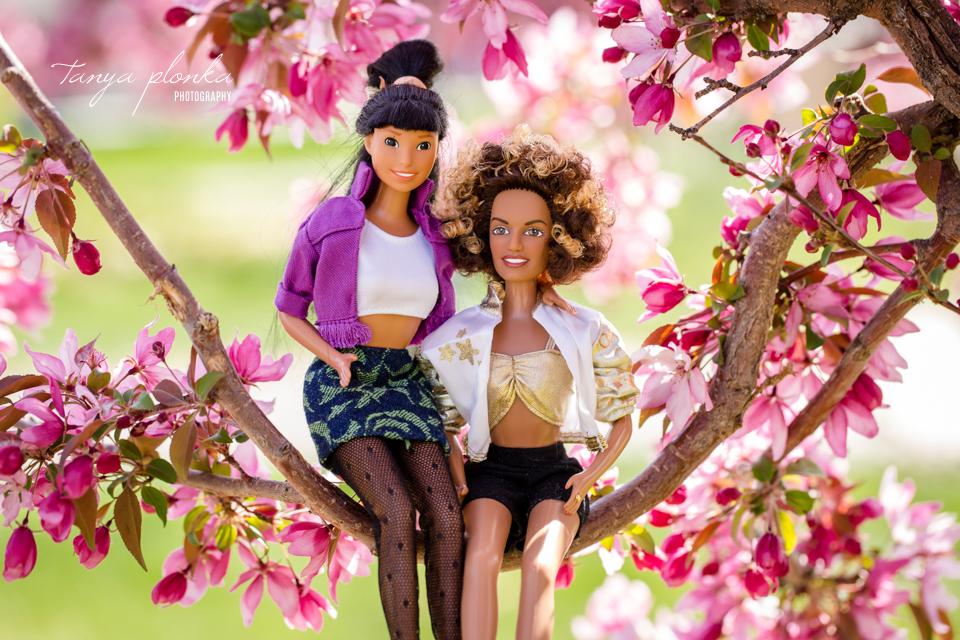 Barbie same sex couples photos