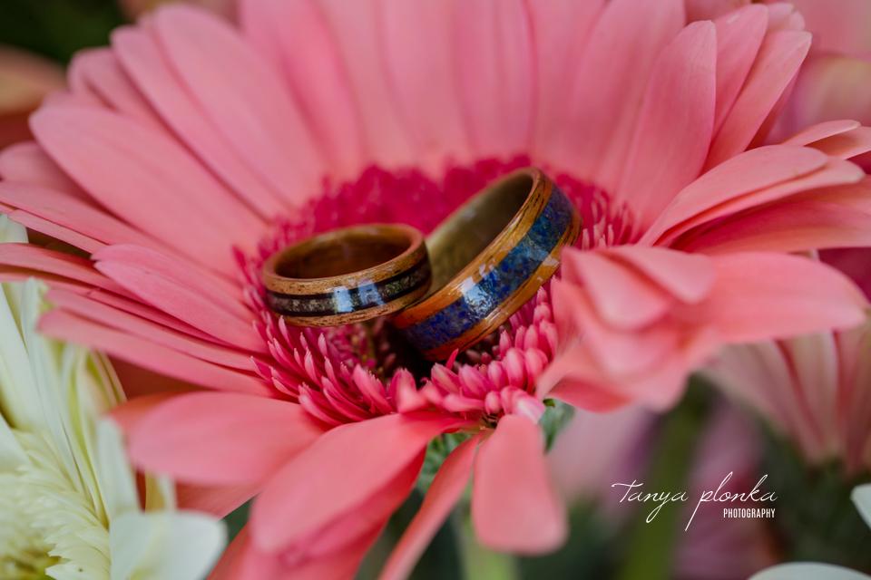 Margie & Daryl, Waterton Cameron Falls wedding photos