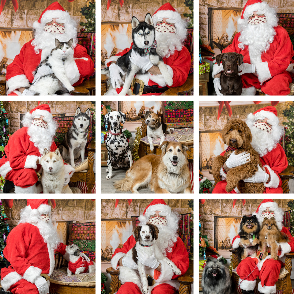Lethbridge Christmas pet photos with Santa