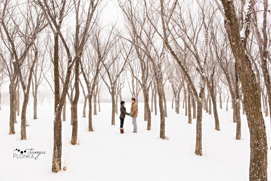 Snowing winter Lethbridge engagement photos