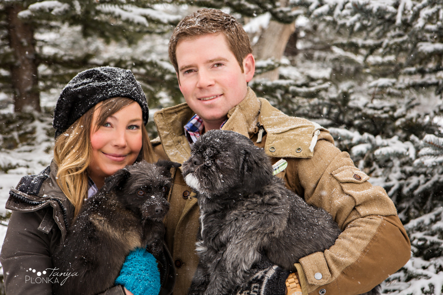 Snowy winter Lethbridge pet portrait photography