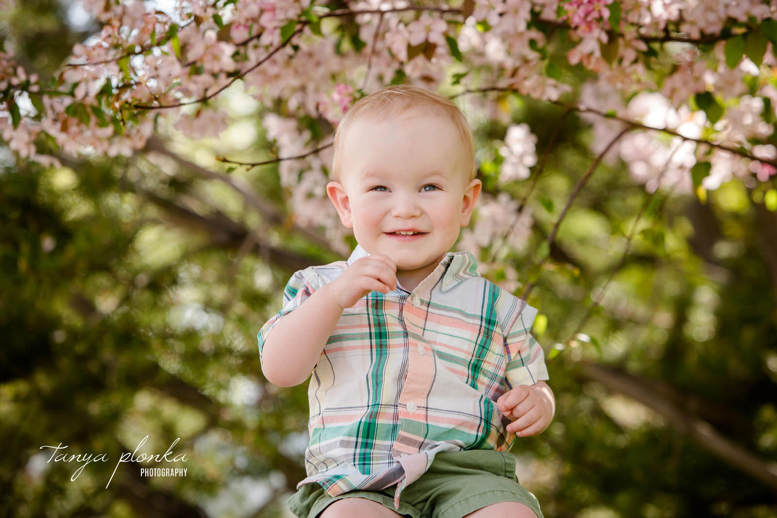 Smiling boy sits in front of pink cherry blossoms