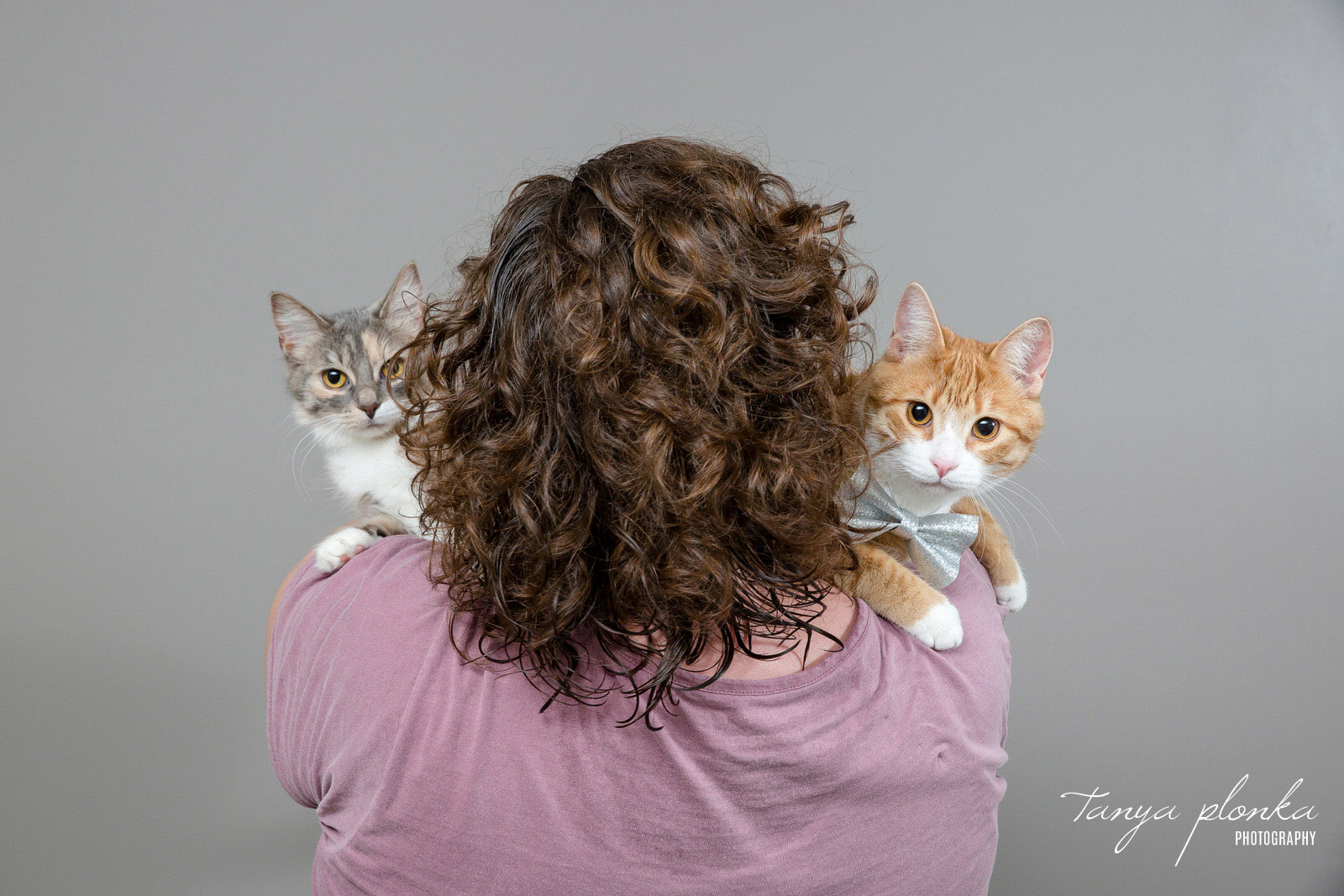 Cute Cats looking over human's shoulder