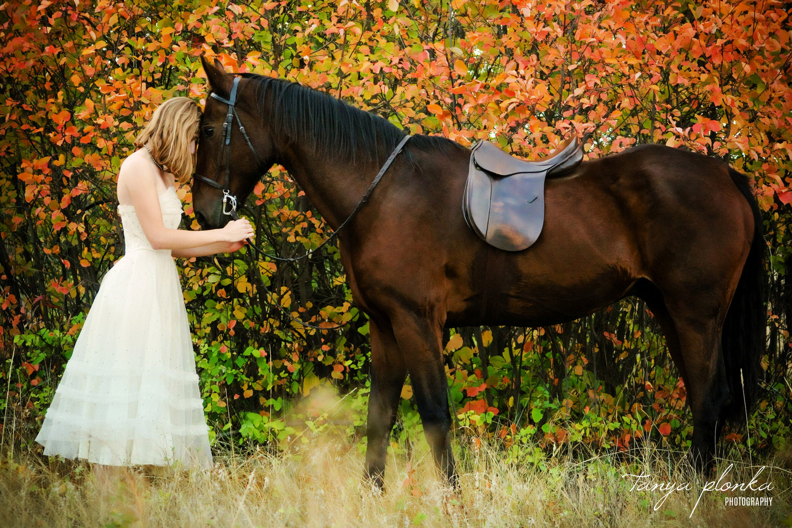 in front of orange leaves, woman in white dress stands forehead to forehead with brown horse