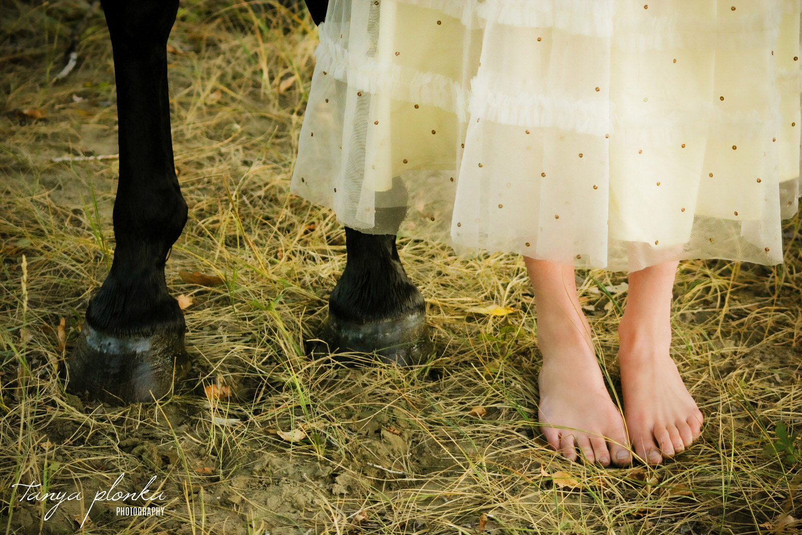 close up feet of horse hooves and human woman in white dress