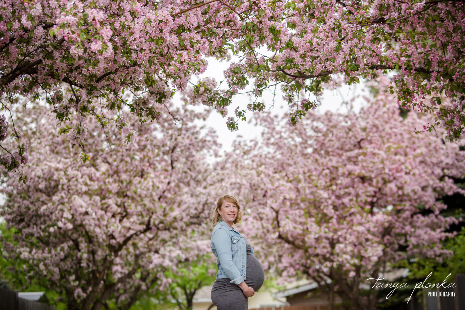 expecting mother smiles at camera in front of pink cherry blossom trees
