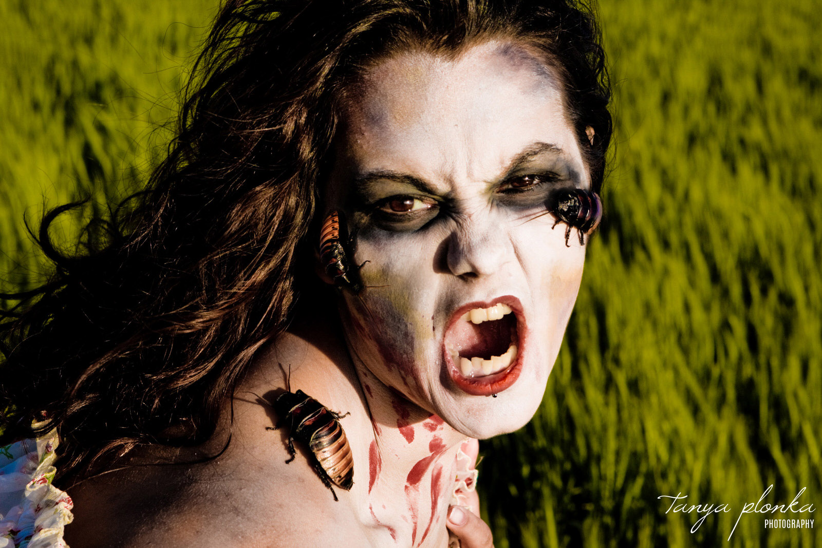 close up of zombie woman with cockroaches on her face.