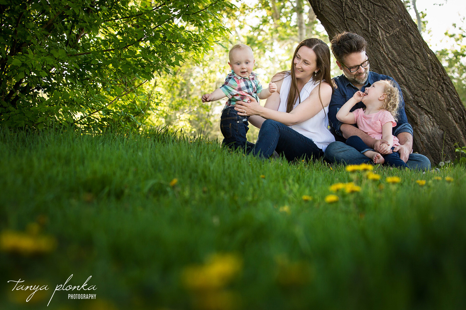 family sits in green grass with dandelions in foreground