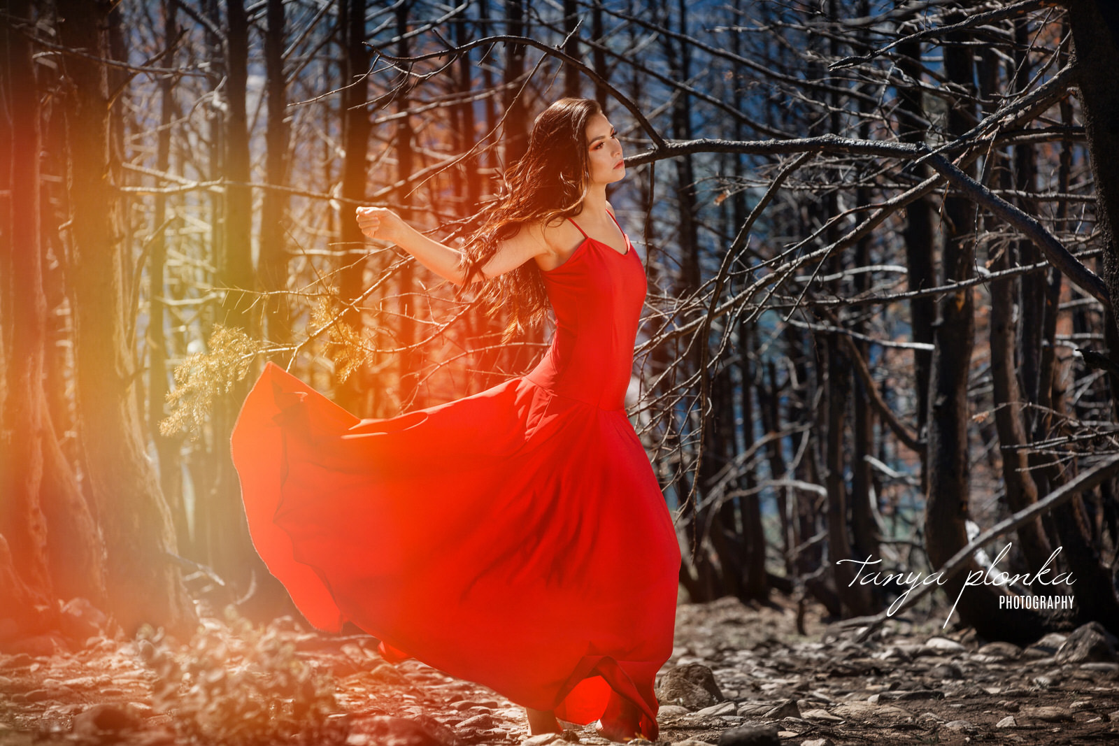 Fiery portrait of woman in red dress in burnt Waterton forest