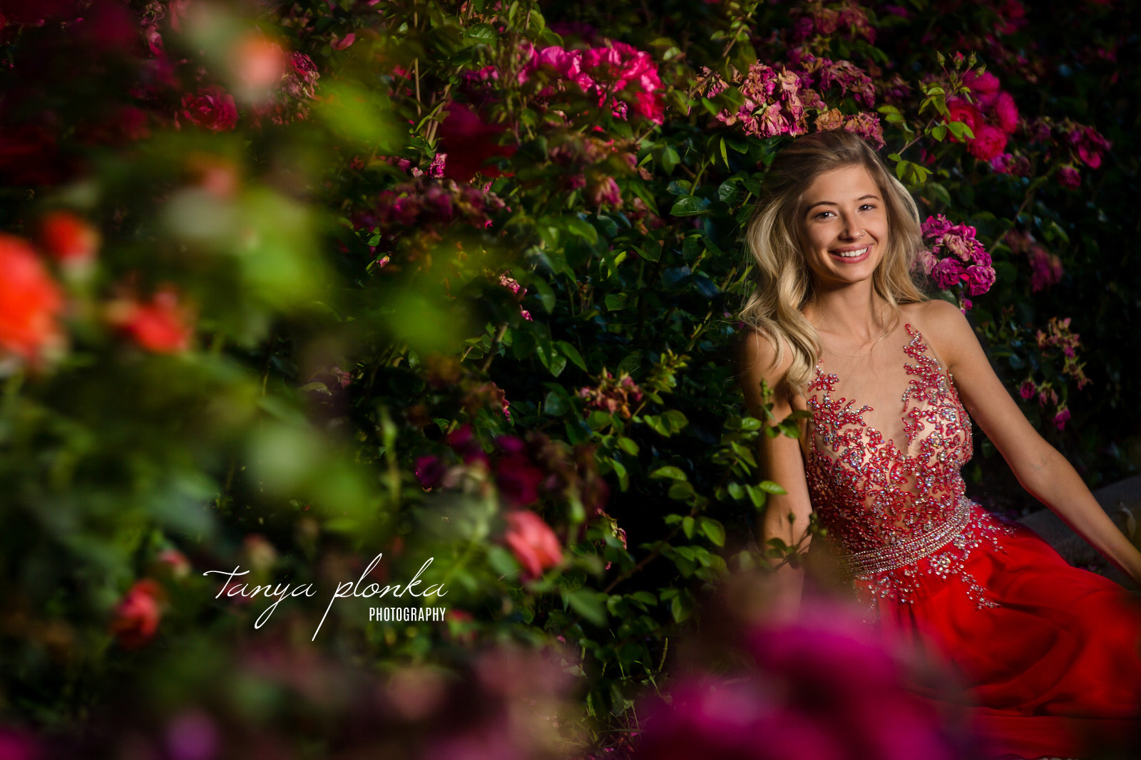 high school grad in sparkly red dress sits in rose garden