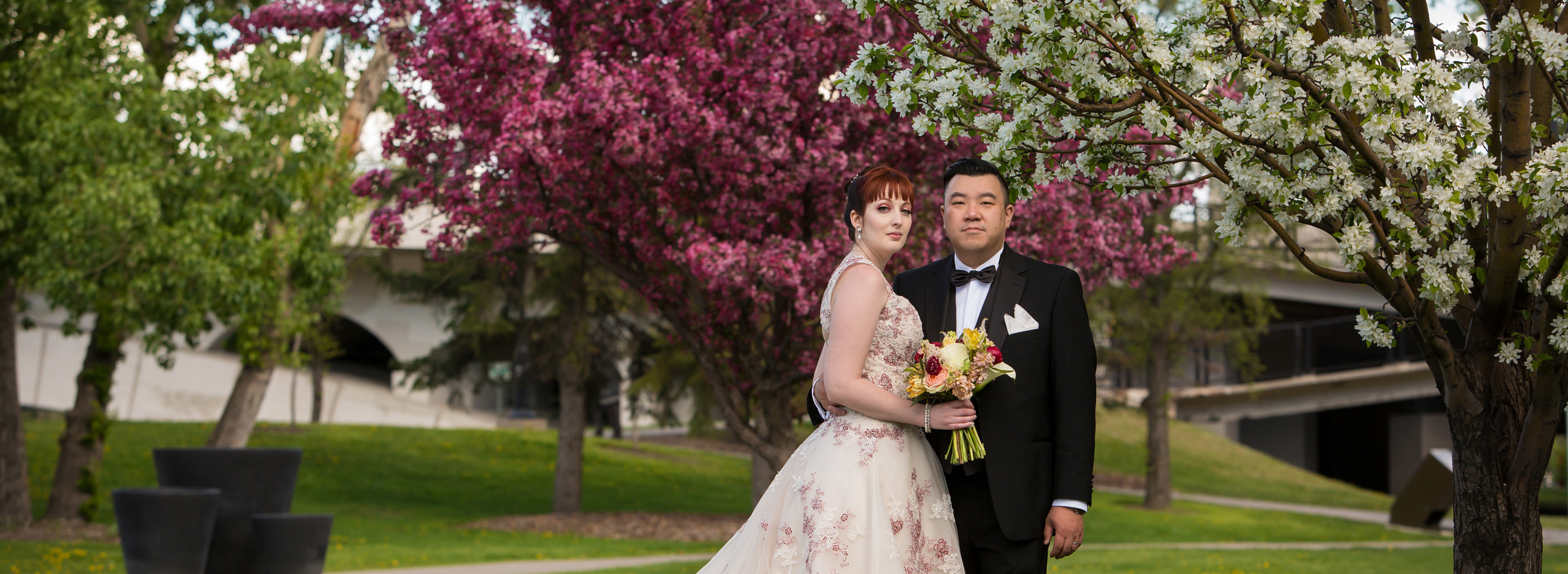 Brittany testimonial, Calgary wedding in front of pink and white cherry blossoms downtown